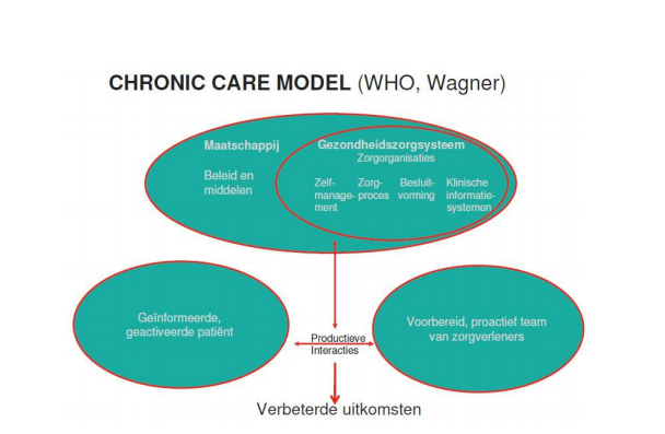 Figuur 1 Chronic Care Model WHO